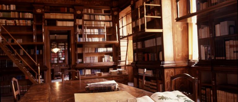 Biblioteca, management, aforismi, analisi transazionale